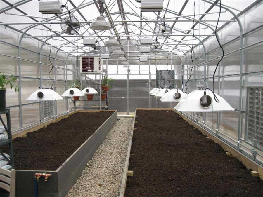 Выращивание в теплицах в зимний период 532